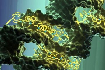 Circuitos sintéticos